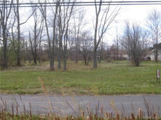 0  River Road  , Saint Clair Twp, MI 48079 (#214125305) :: Sine and Monaghan Realtors