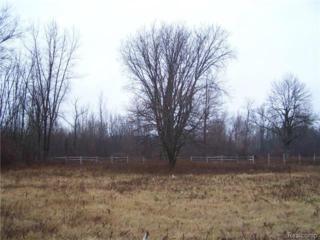 V/L  Smiths Creek Road  , Kimball Twp, MI 48074 (#214127112) :: Sine and Monaghan Realtors