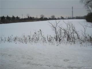 0 S Range Road  , Saint Clair Twp, MI 48079 (#215010734) :: Sine and Monaghan Realtors