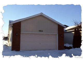 986  Saint Joseph Lane  , Marysville, MI 48040 (#215013307) :: Sine and Monaghan Realtors