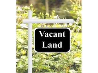 0  Wadhams Road  , Saint Clair Twp, MI 48079 (#215013359) :: Sine and Monaghan Realtors