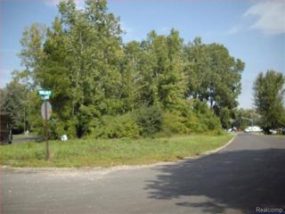 VL  Walnut Drive  , East China Twp, MI 48054 (#215018072) :: Sine and Monaghan Realtors