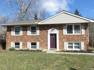 701  Norchester Street  , South Lyon, MI 48178 (#215027577) :: The Buckley Jolley Real Estate Team