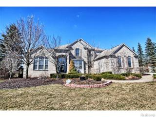 50400 E Fellows Creek Court  , Plymouth Twp, MI 48170 (#215027795) :: RE/MAX Classic