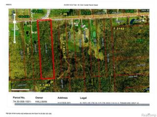 0  Yager Road  , Saint Clair Twp, MI 48079 (#215033372) :: Sine and Monaghan Realtors