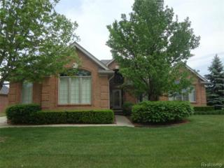 47194  Caylee Drive  , Shelby Twp, MI 48315 (#215053020) :: Sine and Monaghan Realtors