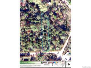 0  Birchwood Drive  , Holly, MI 48442 (#5030047054) :: Sine and Monaghan Realtors