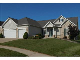 68  Boschert Creek Drive  , Saint Peters, MO 63376 (#14039540) :: Gerard Realty Group