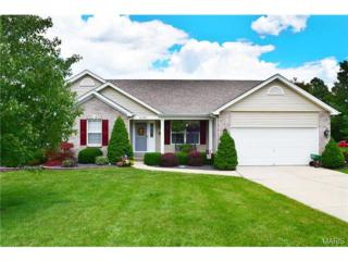 6398  White Clover Drive  , Cedar Hill, MO 63016 (#14040131) :: Gerard Realty Group