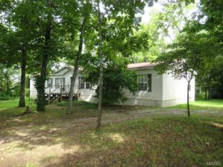 3580  Highway 17 Hwy  , Summersville, MO 65571 (#14040207) :: Equity Missouri
