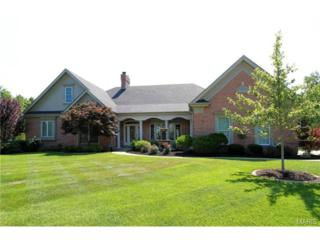 17800  Greyabbey Court  , Chesterfield, MO 63005 (#14041725) :: Gerard Realty Group