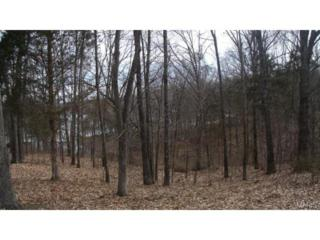 0  Lot 15 Dogwood  , Ste Genevieve, MO 63670 (#14047965) :: Gerard Realty Group