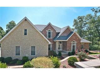 3562  Hawthorne Ridge Drive  , Eureka, MO 63025 (#14049182) :: Gerard Realty Group