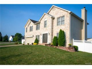 1454  Devonshire County Drive  , Wentzville, MO 63385 (#14049717) :: Gerard Realty Group