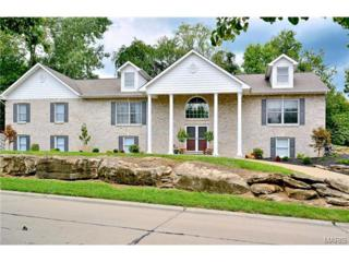 13615  Mason Meadows  , St Louis, MO 63131 (#14051548) :: Gerard Realty Group