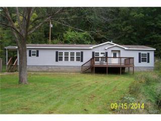 27101  Springfield Road  , Waynesville, MO 65583 (#14054715) :: Walker Real Estate Team