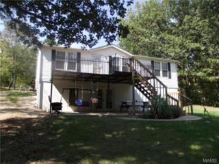 9743  Mockingbird Hill Drive  , Bonne Terre, MO 63628 (#14054904) :: Equity Missouri