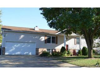 610  Wallach Drive  , Eureka, MO 63025 (#14057662) :: Gerard Realty Group