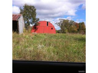 22130  Relaxing Drive  , Waynesville, MO 65583 (#14058689) :: Walker Real Estate Team