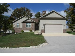 23443  Remnant Lane  , Waynesville, MO 65583 (#14058817) :: Walker Real Estate Team