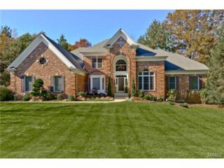 2919  Saint Albans Forest Circle  , Wildwood, MO 63038 (#14059268) :: Gerard Realty Group