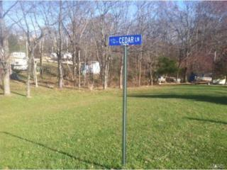 14602  Cedar Lane  , Ste Genevieve, MO 63670 (#14064277) :: Gerard Realty Group
