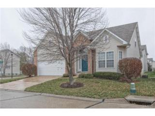 1100  Cambridge Cove Court  , Chesterfield, MO 63017 (#14064435) :: Gerard Realty Group