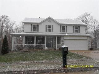 25  Hawthorne Hills Drive  , Warrenton, MO 63383 (#14064780) :: AllStLouisHomes.com