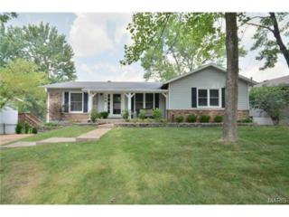 179  Brightfield Drive  , Ballwin, MO 63021 (#14066187) :: Equity Missouri