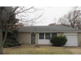 4104  Christianne Court  , St Louis, MO 63116 (#14067127) :: Equity Missouri