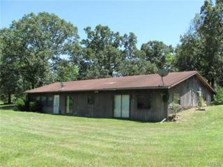 22515  Reporter Road  , Waynesville, MO 65583 (#15003889) :: Walker Real Estate Team