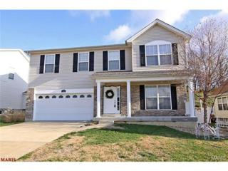 928  Mystic Oaks Court  , Imperial, MO 63052 (#15004712) :: Gerard Realty Group