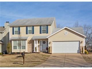 210  Oakmont Farm Drive  , Ballwin, MO 63021 (#15008192) :: Realty Executives of St. Louis