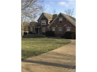 5  Kinker Drive  , Moscow Mills, MO 63362 (#15010629) :: Realty Executives of St. Louis
