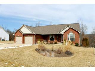 111  Hickory Ridge Drive  , Waynesville, MO 65583 (#15010814) :: Walker Real Estate Team