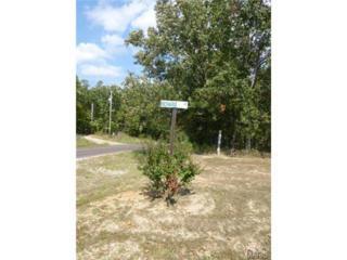 25475  Richard Drive  25475, 25490, 2, Waynesville, MO 65583 (#15011056) :: Walker Real Estate Team