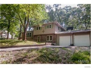 1806  Sanders Road  , Waynesville, MO 65583 (#15011173) :: Walker Real Estate Team