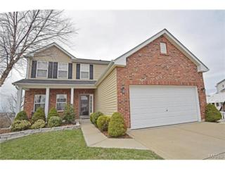 5  Overlook Place Court  , St Louis, MO 63129 (#15013820) :: AllStLouisHomes.com