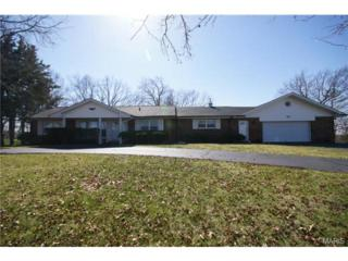 5763  Wells Road  , St Louis, MO 63128 (#15015450) :: Realty Executives of St. Louis