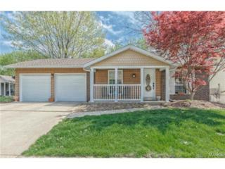 11956  Meadow Run Court  , Maryland Heights, MO 63043 (#15015794) :: AllStLouisHomes.com