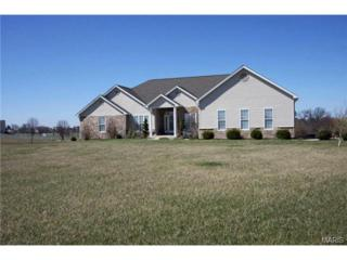 71  Brentwood Drive  , Moscow Mills, MO 63362 (#15016565) :: AllStLouisHomes.com