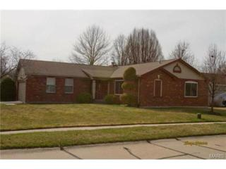 14302  Riverfront Drive  , Florissant, MO 63034 (#15016704) :: Realty Executives of St. Louis