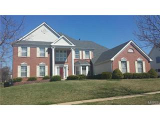 14925  Straub Hill Lane  , Chesterfield, MO 63017 (#15016788) :: Gerard Realty Group