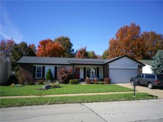 4327  Meadowgreen Trails Drive  , St Louis, MO 63129 (#15017137) :: Realty Executives of St. Louis