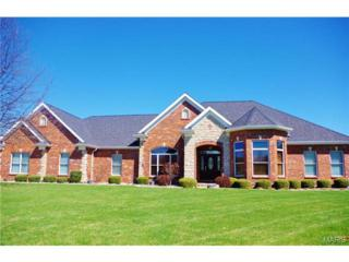 5300  Enchanted Court  , Weldon Spring, MO 63304 (#15017393) :: Gerard Realty Group