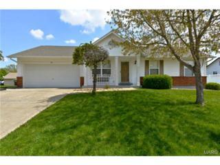 80  Royal Oaks Drive  , O Fallon, MO 63366 (#15018893) :: AllStLouisHomes.com