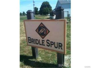 42  Lots in Bridle Spur  , Winfield, MO 63389 (#15023596) :: Realty Executives of St. Louis