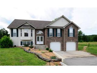 16925  Highland Springs Lane  , Dixon, MO 65459 (#15026913) :: Walker Real Estate Team