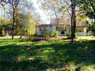 20138  Hwy 17  , Waynesville, MO 65583 (#14058375) :: Walker Real Estate Team