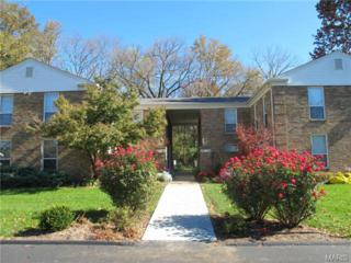 418  Colony Woods Drive  , Kirkwood, MO 63122 (#14063417) :: Gerard Realty Group